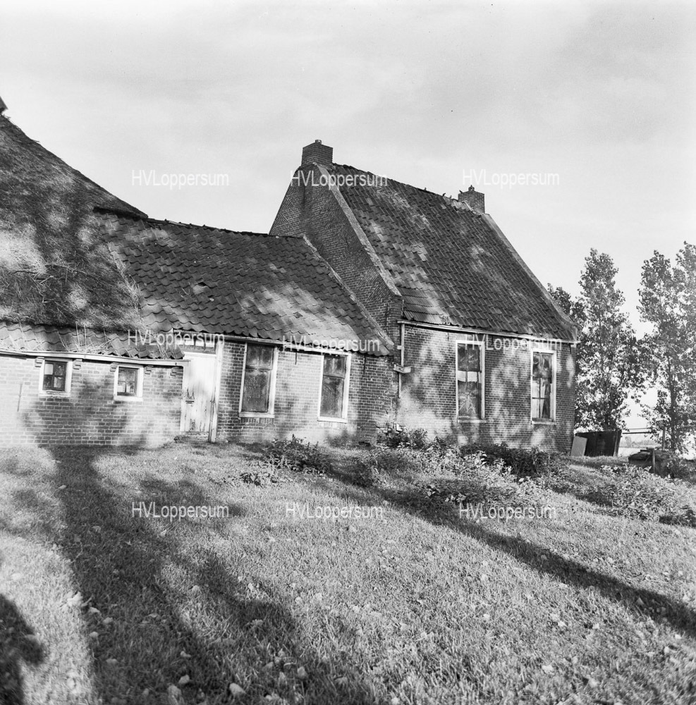 Bosweg 22