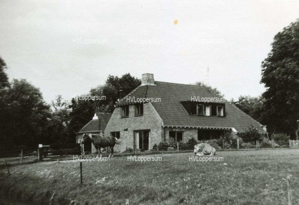 Bosweg 29
